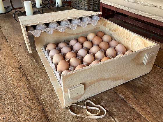 Boxes - PHS, Egg transport box, tray size