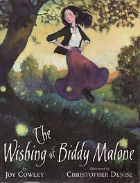 The Wishing of Biddy Malone_Cover.jpg