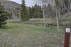 Lake Fork Site 19