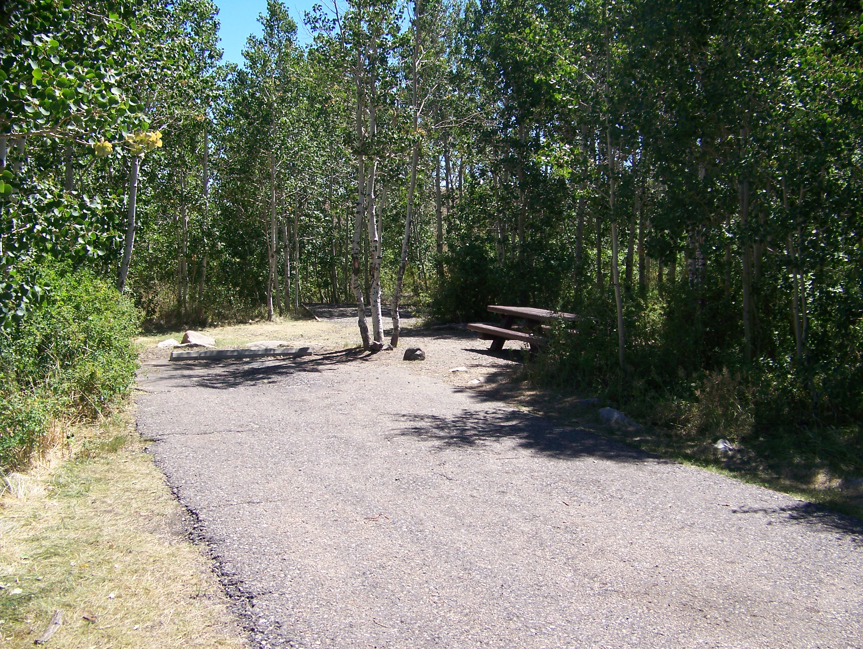 Angel Creek Campground Site 18