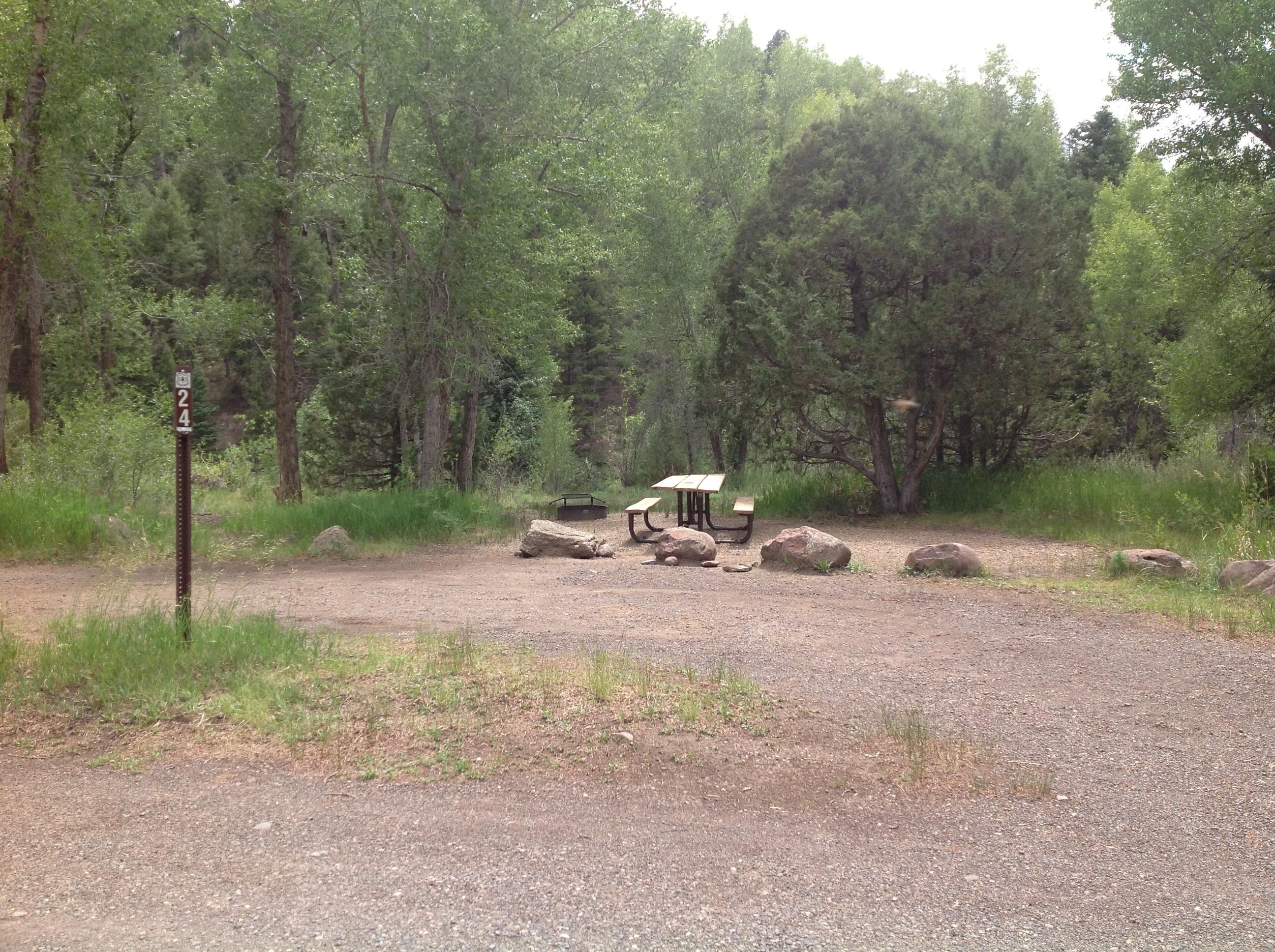 Mogote Campground Site 24