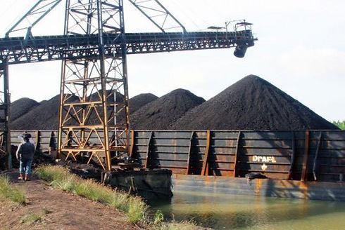 Lampunut-coal.jpg