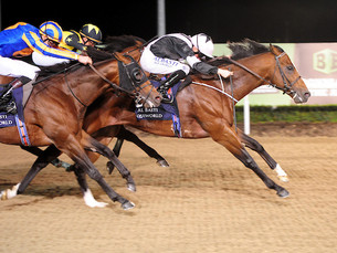 Hit The Bid Takes Another Group 3 in The Mercury