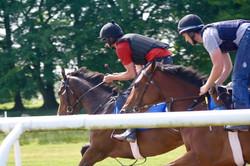 2016 yard and gallops 181 (1).jpg