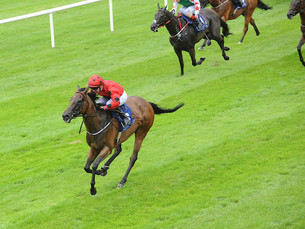 Optionality Romps to Curragh Maiden Success