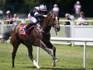 """Hit The Bid Makes It 2 """"Black Type"""" Wins in Convincing Fashion"""