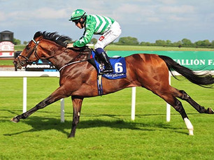 Low Latency Lives Up To His Name in Impressive Maiden Victory