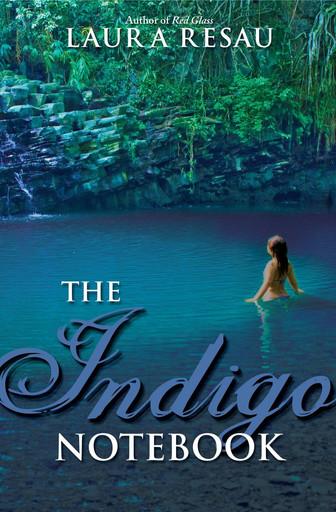 The Indigo Notebook by Laura Resau