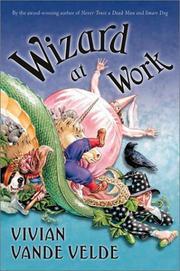 Wizard at Work by Vivian Vande Velde