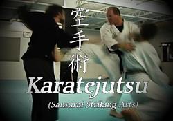 Karatejutsu