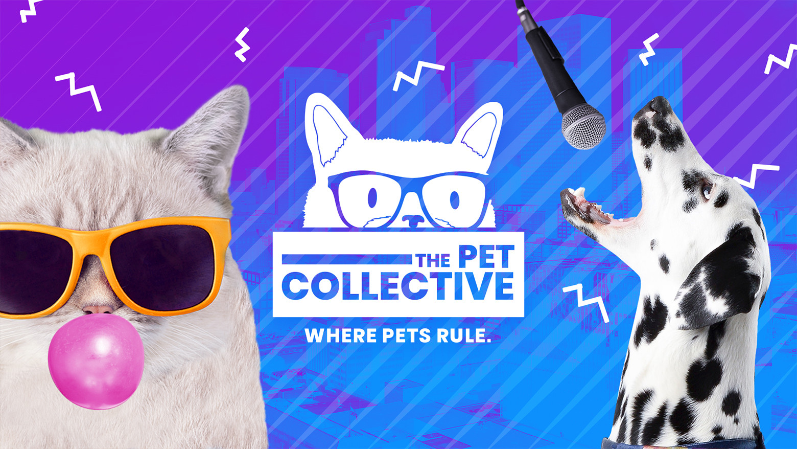 The Pet Collective