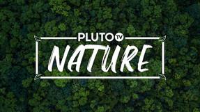 Pluto TV Nature_featuredImage.jpg