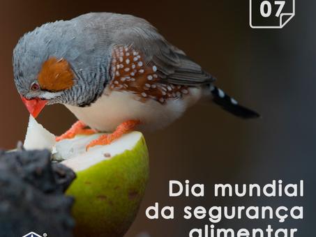 7 de Junho - Dia Mundial da segurança alimentar