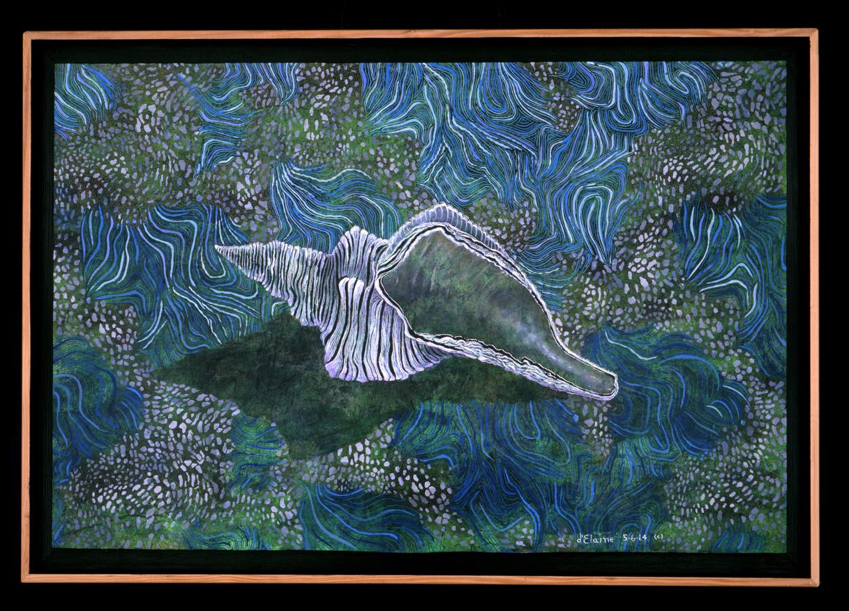 Conch Tide