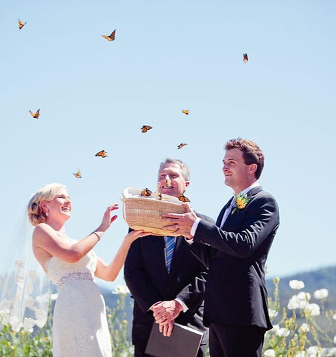 Butterfly Release Ceremony_edited.jpg