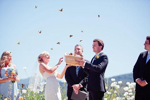Butterfly Release Ceremony.jpg