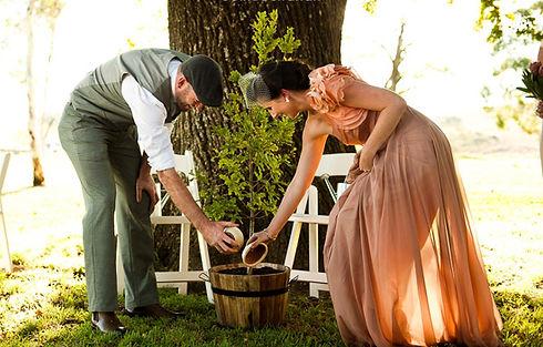 Planting a Tree Ceremony.jpg