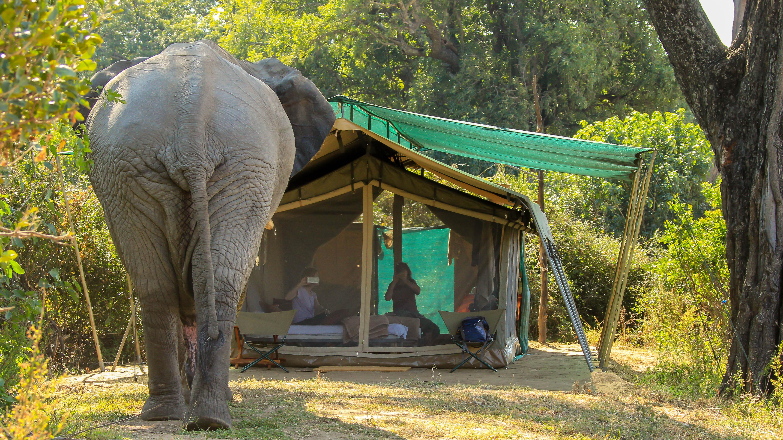 """""""Stranded"""" in Tent # 1"""