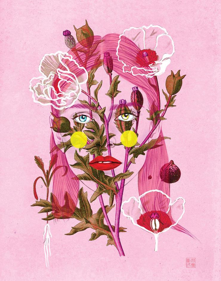11x14 Poppy Love.jpg