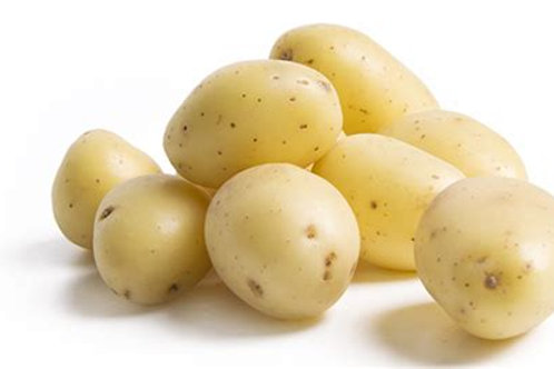 pomme de terre farineuse