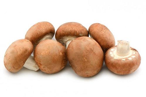 Champignon brun