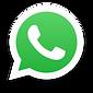 WhatsApp Fernanda Bérgamo