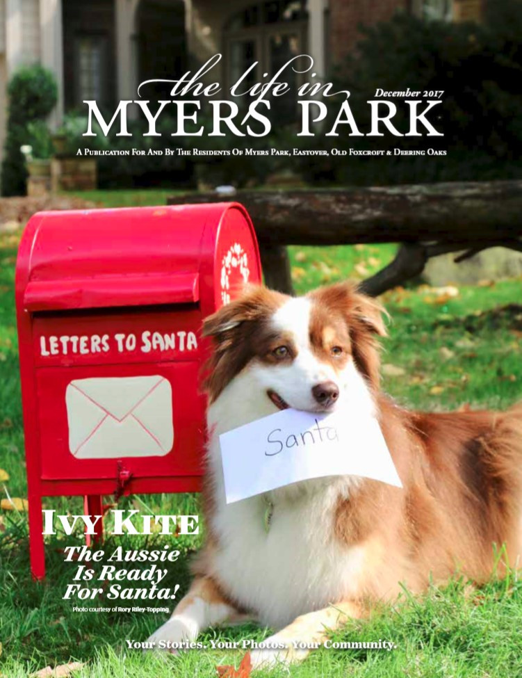 Ivy painting dog Myers Park Magazine