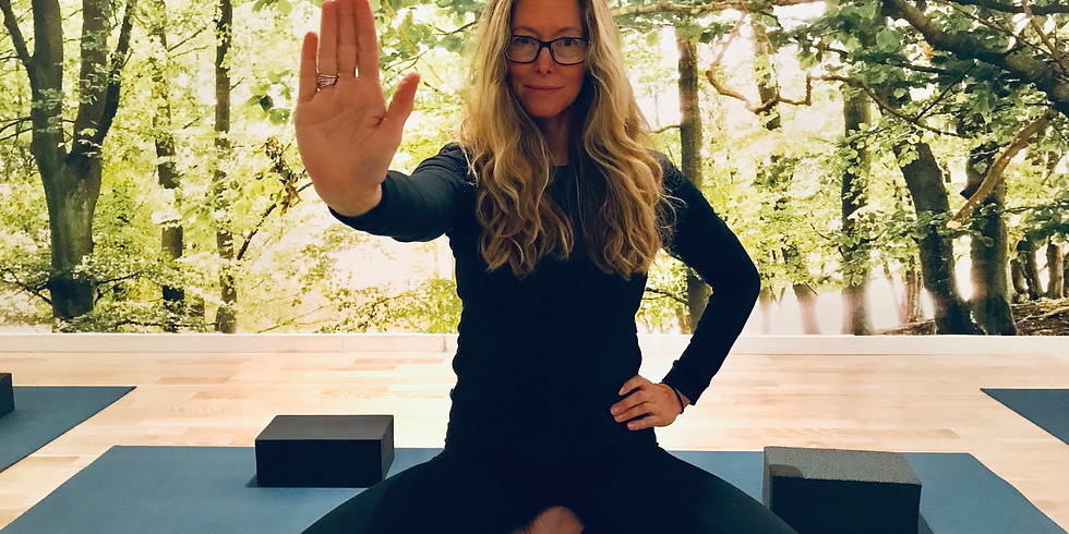 Donation Class for Yoga Stops Traffic: Dynamic Vinyasa with Gunn
