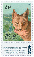 """Label inscription: """"A hand without a name was found in a forest in the Jezreel Valley, a passerby saw it hanging from a crafty jackal mouth"""""""