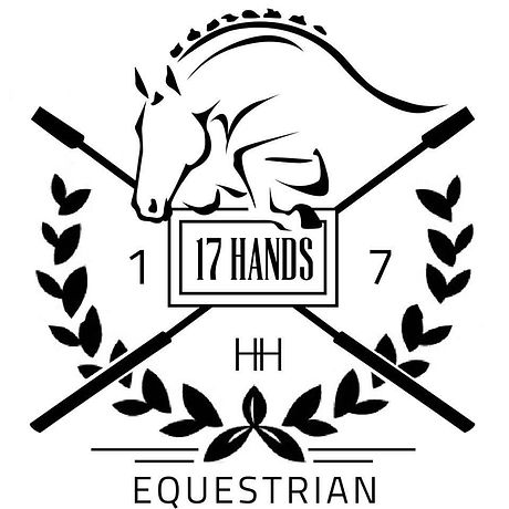 17 hands.jpg