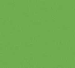 green-background.png