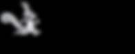SNB_AFRICA_Logo.png