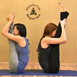 Hatha Yoga teachers training India