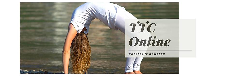TTC Online.png