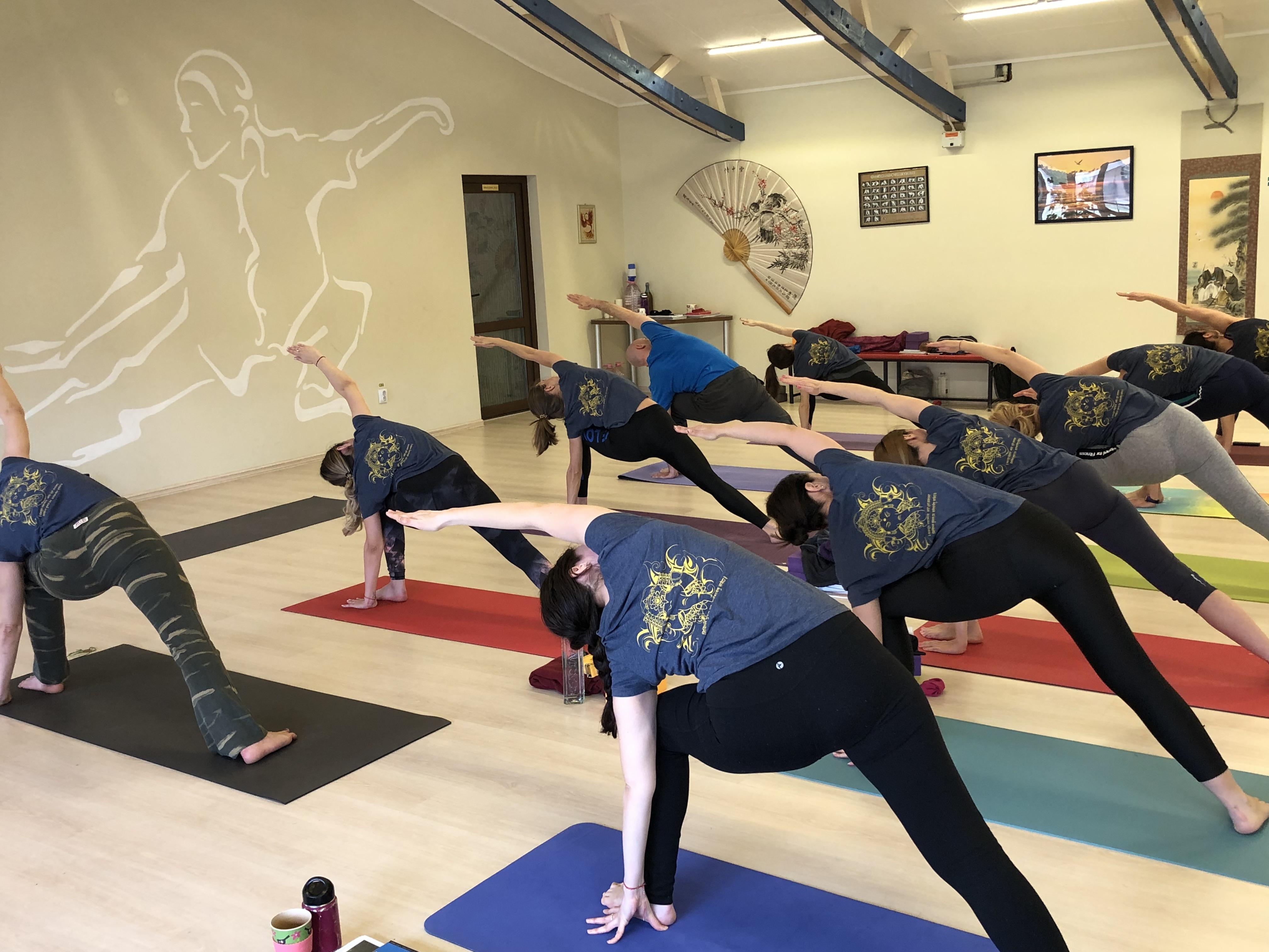 Yoga TTC in Cluj