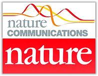 Nature C.jpg