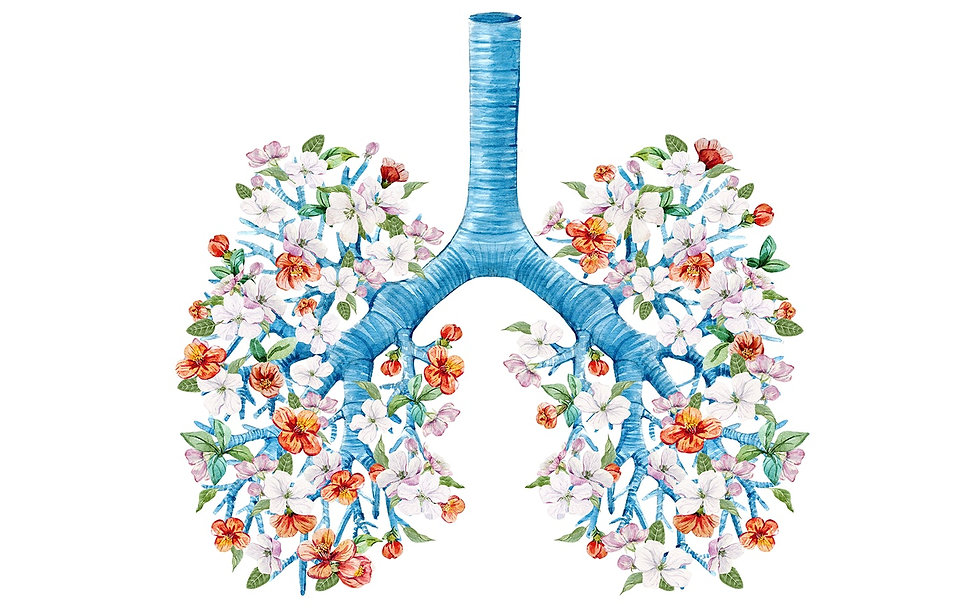 lungs-1.jpeg