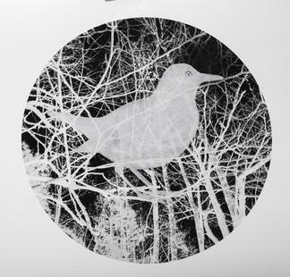 Fugleminne I