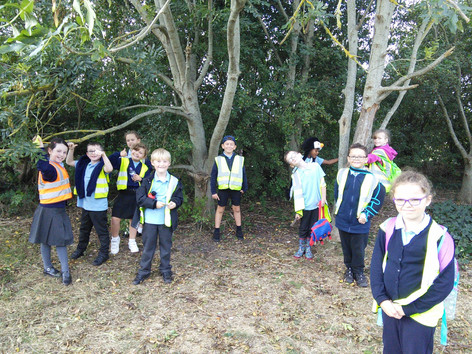 Year 3 visit Sevenoaks Park