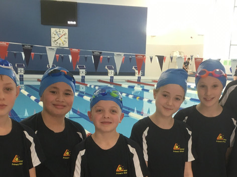 Swimming Gala Success
