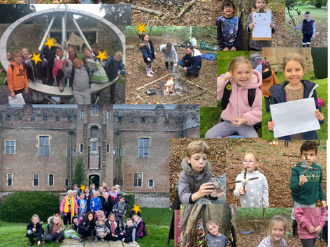 Forest Learning in Year 3
