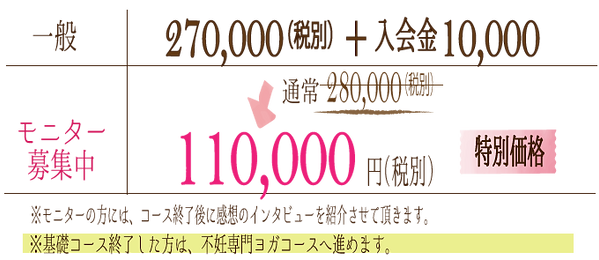 料金¥110,000.png