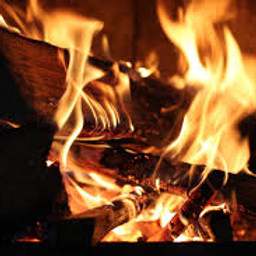 Fireside Chat: Who are the digital transformers in your organisation