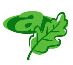 Andersen Company - Eco Friendly Logo