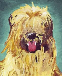 Shaggy's Portrait