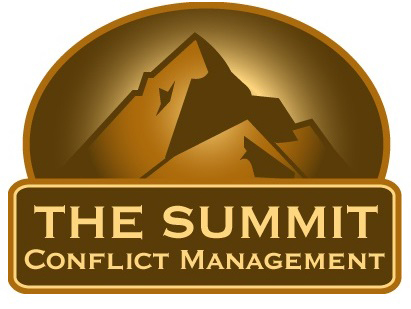 The Summit Logo & Website