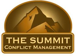 The Summit Logo & Website
