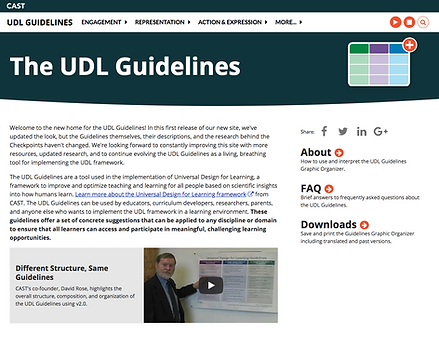 Screenshot from new UDL Guidelines website.
