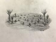 Laketrees.JPG