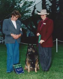 1992 Kaya